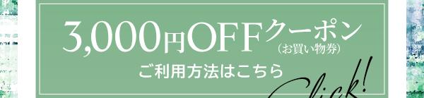 3,000円OFFクーポン (お買い物券) ご利用方法はこちら  Click!